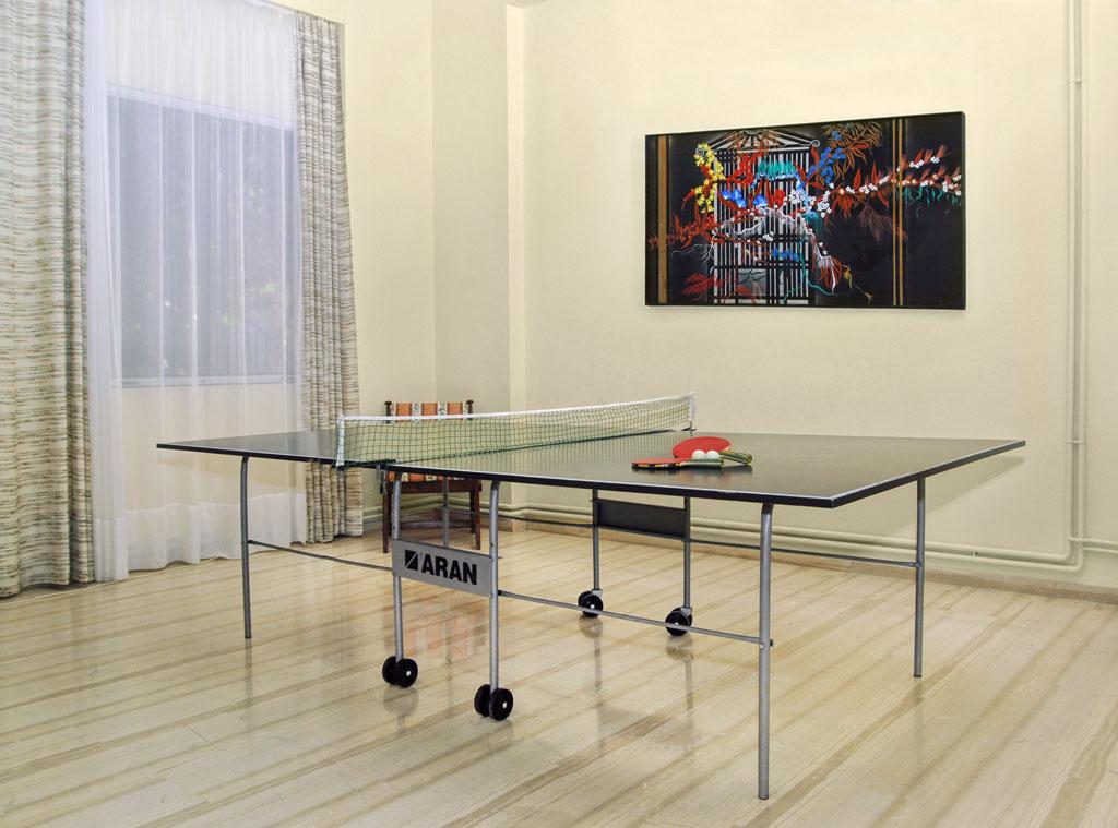 Mimoza Beach Resort   Ping Pong